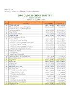 Báo cáo tài chính quý 3 năm 2007 - Công ty Cổ phần Văn hóa Tân Bình