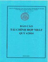Báo cáo tài chính hợp nhất quý 4 năm 2014 - Công ty cổ phần Đầu tư Hạ tầng Kỹ thuật T.P Hồ Chí Minh