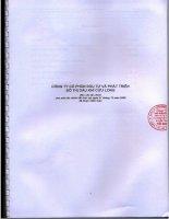 Báo cáo tài chính năm 2009 (đã kiểm toán) - Công ty cổ phần Đầu tư và Phát triển Đô thị Dầu khí Cửu Long