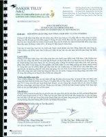 Báo cáo tài chính năm 2010 (đã kiểm toán) - Công ty Cổ phần Đầu tư Xây dựng 3-2