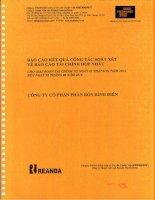 Báo cáo tài chính hợp nhất quý 2 năm 2014 (đã soát xét) - Công ty cổ phần Phân bón Bình Điền