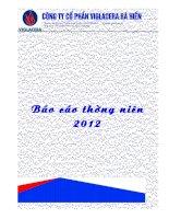 Báo cáo thường niên năm 2012 - Công ty Cổ phần Viglacera Bá Hiến