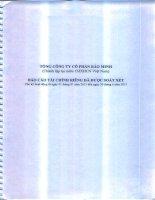 Báo cáo tài chính công ty mẹ quý 2 năm 2013 (đã soát xét) - Tổng Công ty Cổ phần Bảo Minh