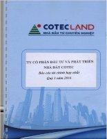 Báo cáo tài chính hợp nhất quý 1 năm 2016 - Công ty Cổ phần Đầu tư và Phát triển Nhà đất COTEC