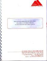 Báo cáo tài chính năm 2010 - Công ty Cổ phần COMA18