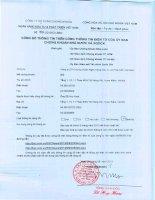 Báo cáo tài chính quý 2 năm 2013 (đã soát xét) - Công ty cổ phần Chứng khoán Ngân hàng Đầu tư và Phát triển Việt Nam