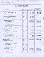 Báo cáo tài chính hợp nhất quý 4 năm 2011 - Công ty Cổ phần Chiếu xạ An Phú