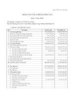 Báo cáo tài chính quý 3 năm 2009 - Công ty Cổ phần Cà phê An Giang