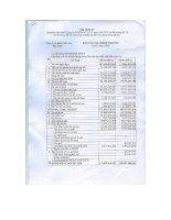Báo cáo tài chính quý 2 năm 2008 - Công ty Cổ phần Thủy sản Bạc Liêu