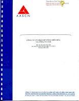 Báo cáo tài chính hợp nhất năm 2013 (đã kiểm toán) - Công ty Cổ phần Bê tông Biên Hòa
