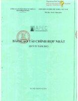 Báo cáo tài chính hợp nhất quý 4 năm 2013 - Công ty Cổ phần Đầu tư Châu Á - Thái Bình Dương