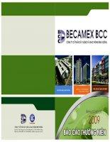 Báo cáo thường niên năm 2009 - Công ty Cổ phần Xây dựng và Giao thông Bình Dương