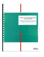 Báo cáo tài chính năm 2010 (đã kiểm toán) - Công ty cổ phần Xuất nhập khẩu An Giang