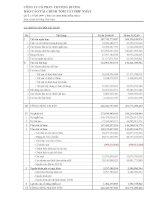 Báo cáo tài chính hợp nhất quý 2 năm 2009 - Công ty Cổ phần Chương Dương