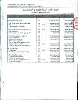 Báo cáo tài chính hợp nhất quý 2 năm 2012 - Công ty Cổ phần Đầu tư Alphanam