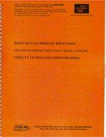 Báo cáo tài chính năm 2010 (đã kiểm toán) - Tổng CTCP Bảo hiểm Bảo Long