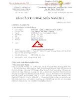 Báo cáo thường niên năm 2013 - Công ty cổ phần Khoáng sản Á Châu