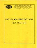 Báo cáo tài chính hợp nhất quý 4 năm 2014 - Công ty Cổ phần Chiếu xạ An Phú