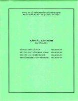Báo cáo tài chính quý 4 năm 2014 - Công ty cổ phần Khoáng sản Bình Định