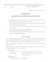 Nghị quyết Đại hội cổ đông bất thường ngày 06-01-2011 - Công ty Cổ phần Cà phê An Giang