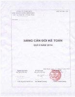 Báo cáo tài chính quý 2 năm 2014 - Công ty cổ phần Cấp thoát nước Bình Định