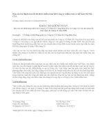 Báo cáo tài chính năm 2008 (đã kiểm toán) - Công ty Cổ phần Bê tông Biên Hòa