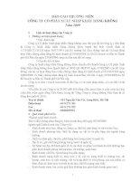 Báo cáo thường niên năm 2009 - Công ty Cổ phần Xuất nhập khẩu Hàng không