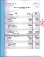 Báo cáo tài chính quý 4 năm 2009 - Công ty cổ phần Khoáng sản Bình Định
