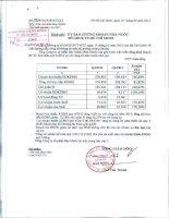 Báo cáo tài chính hợp nhất quý 4 năm 2012 - Tổng Công ty Cổ phần Bảo Minh