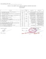 Báo cáo tài chính công ty mẹ quý 1 năm 2013 - Công ty Cổ phần Nam Việt