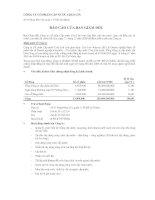 Báo cáo tài chính năm 2009 (đã kiểm toán) - Công ty Cổ phần Cấp nước Chợ Lớn