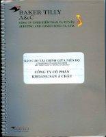 Báo cáo tài chính quý 2 năm 2013 (đã soát xét) - Công ty cổ phần Khoáng sản Á Châu