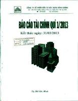 Báo cáo tài chính công ty mẹ quý 1 năm 2013 - Công ty Cổ phần Đầu tư Xây dựng Bình Chánh