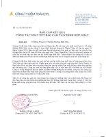 Báo cáo KQKD hợp nhất quý 2 năm 2010 (đã kiểm toán) - Công ty Cổ phần Đường Biên Hoà