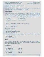 Báo cáo tài chính năm 2011 (đã kiểm toán) - Công ty Cổ phần Khoáng sản Vinas A Lưới
