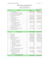 Báo cáo tài chính quý 4 năm 2009 - Công ty cổ phần Vicem Bao bì Bỉm Sơn
