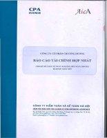 Báo cáo tài chính hợp nhất quý 2 năm 2012 (đã soát xét) - Công ty Cổ phần Chương Dương