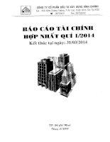 Báo cáo tài chính hợp nhất quý 1 năm 2014 - Công ty Cổ phần Đầu tư Xây dựng Bình Chánh