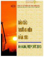 Báo cáo thường niên năm 2013 - Công ty Cổ phần Bê tông Biên Hòa