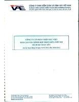 Báo cáo tài chính hợp nhất quý 2 năm 2012 (đã soát xét) - Công ty Cổ phần Đầu tư BVG