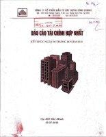 Báo cáo tài chính hợp nhất quý 2 năm 2010 - Công ty Cổ phần Đầu tư Xây dựng Bình Chánh