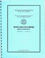 Báo cáo tài chính quý 1 năm 2011 - Công ty Cổ phần Xi măng Bỉm Sơn