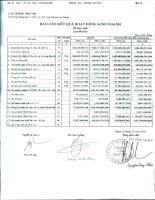 Báo cáo KQKD hợp nhất quý 4 năm 2010 - Công ty Cổ phần Nam Việt