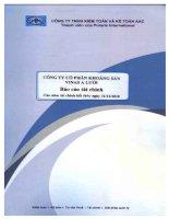 Báo cáo tài chính năm 2010 (đã kiểm toán) - Công ty Cổ phần Khoáng sản Vinas A Lưới