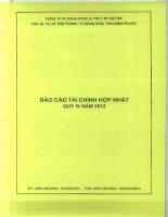Báo cáo tài chính hợp nhất quý 4 năm 2012 - CTCP Sản xuất Kinh doanh Dược và Trang thiết bị Y tế Việt Mỹ