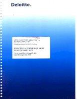 Báo cáo tài chính hợp nhất quý 2 năm 2012 (đã soát xét) - Công ty Cổ phần Xây dựng và Kinh doanh Vật tư