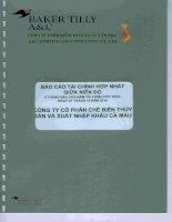Báo cáo tài chính hợp nhất quý 2 năm 2014 (đã soát xét) - Công ty Cổ phần Chế biến và Xuất nhập khẩu Thuỷ sản Cà Mau