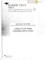 Báo cáo tài chính năm 2013 (đã kiểm toán) - Công ty cổ phần Khoáng sản Á Châu