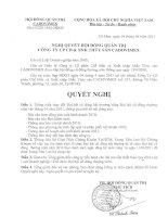 Nghị quyết Hội đồng Quản trị ngày 4-4-2011 - Công ty Cổ phần Chế biến và Xuất nhập khẩu Thủy sản CADOVIMEX