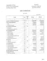 Báo cáo tài chính quý 1 năm 2010 - Công ty Cổ phần Nhiệt điện Bà Rịa